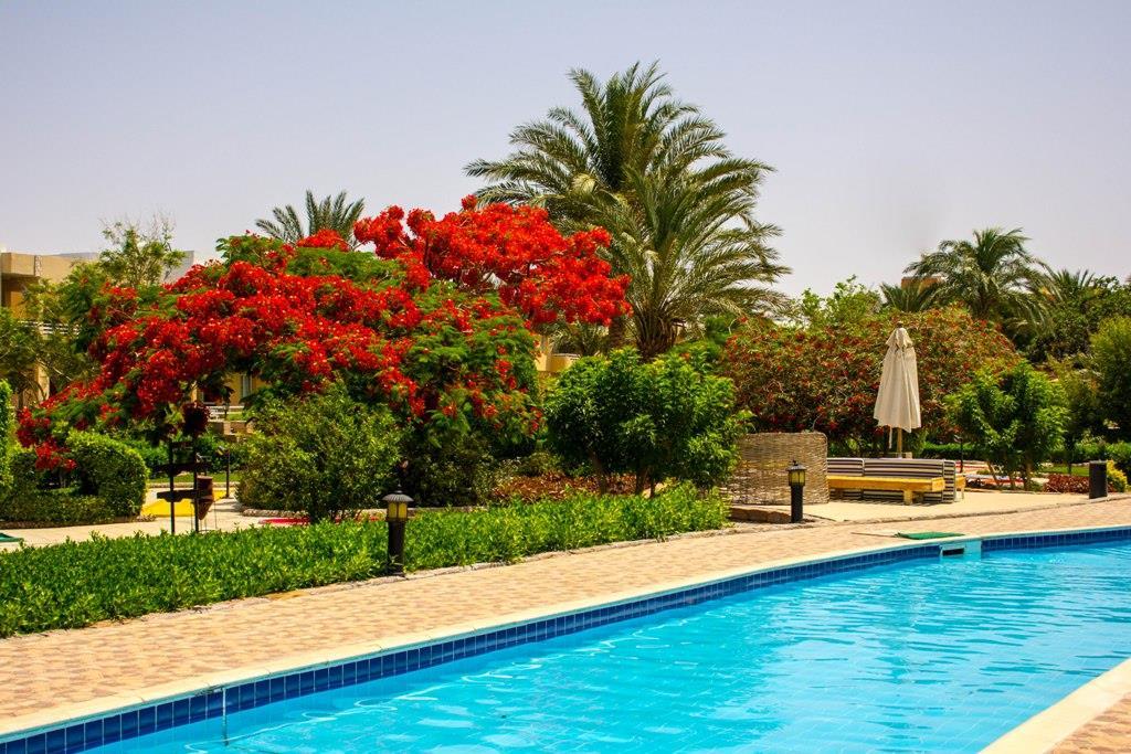 golden-beach-resort-general-00245