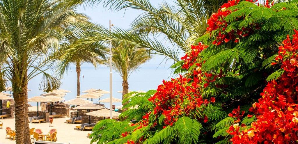 golden-beach-resort-general-0064