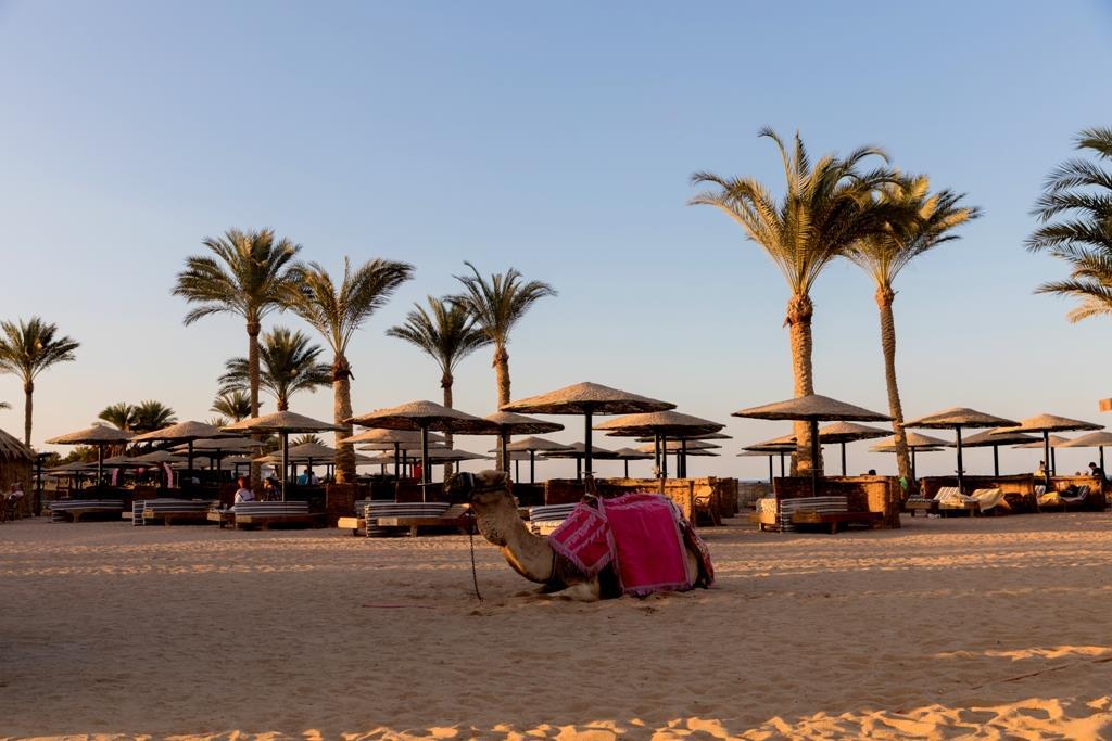 golden-beach-resort-general-0072