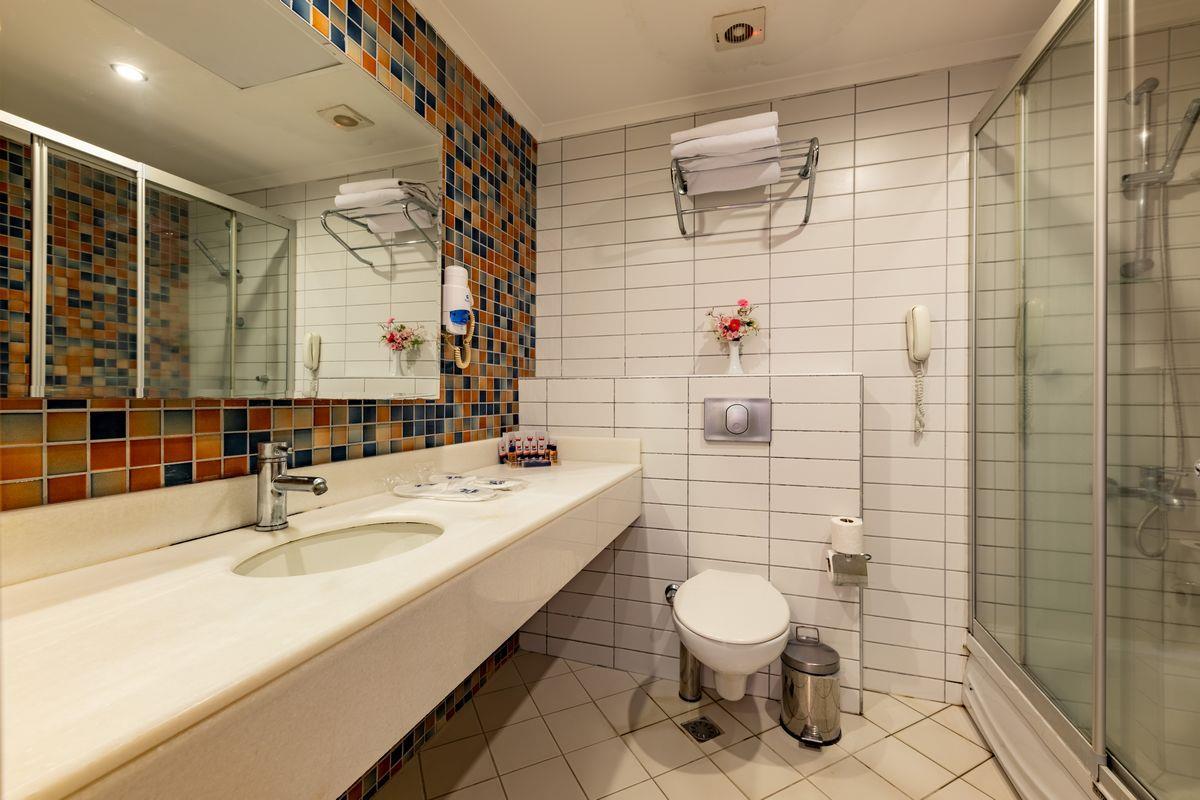 VIKING SUITE HOTEL****